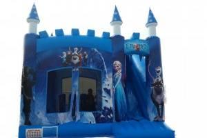 frozen-castle01-main-300x225
