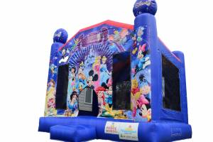 Disney Bouncer